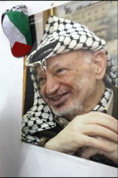 Our Palestine hat - PL620